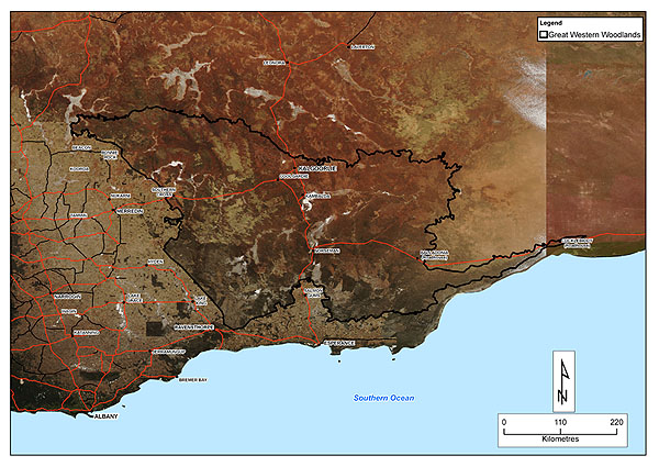 A 100 year biodiversity conservation strategy for western australia