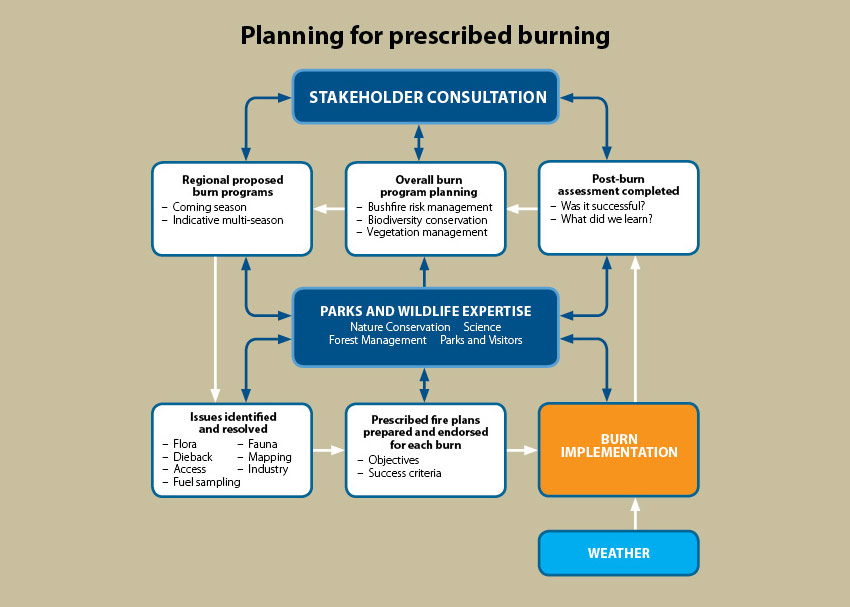 Planning For Prescribed Burning Parks And Wildlife Service