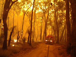 Hairpin Bend Road – Perth Hills fire 2005