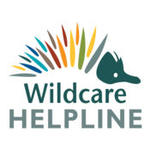 wildcarehelpline