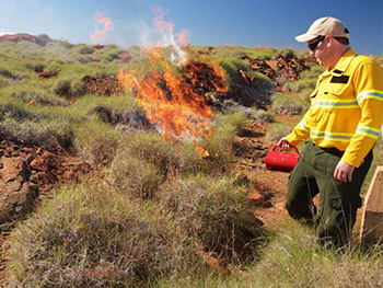 pilbara mosaic burning spinifex