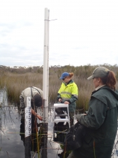 installing water monitiring equipment at a gingilup swamp nature reserve