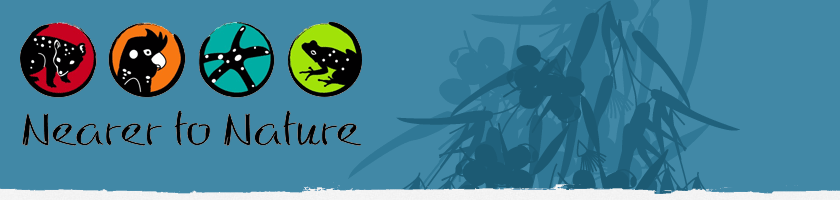 Nearer to Nature Banner