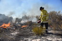 Prescribed burning was carried out across various tenures surrounding Kalbarri, including Kalbarri National Park, to create a strategic buffer.