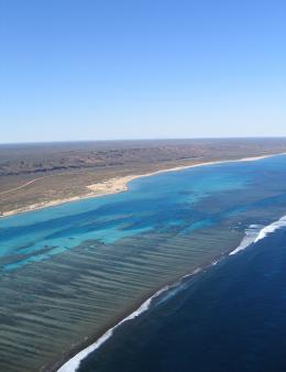 Public comment sought on draft joint management plan for Ningaloo Coast