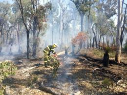 Parks and Wildlife prescribed burning in the Perth Hills